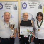 CRESTED BUDGERIGAR CLUB MEMBERS SHOW