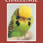 Further Copies Of The Challenge Now Available