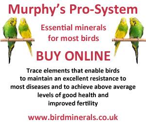 Murphy's Pro-System